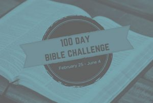Read Bible in 100 Days