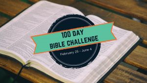 100 Day Bible Reading Challenge